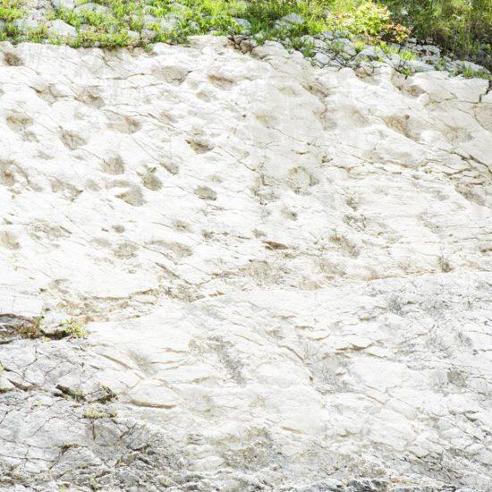 kelle-terre-dinosauro-esperia